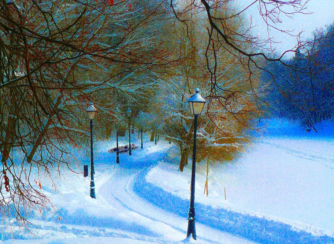 irina-fortuna-tsaritsino-winter 09.jpg