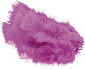 перья розовые