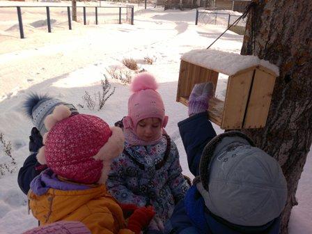 наблюдения зимой на прогулке-1.jpg