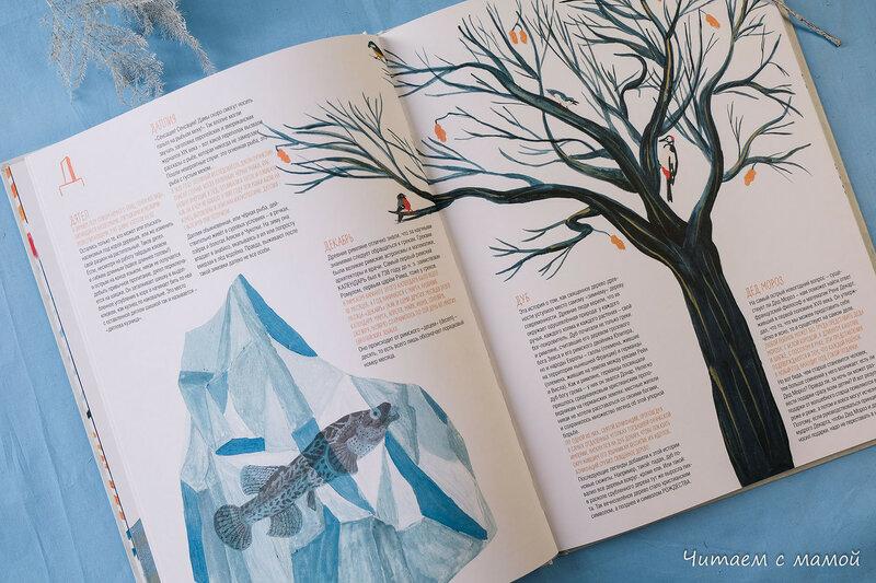 книга холода, льда и снега-9441.JPG