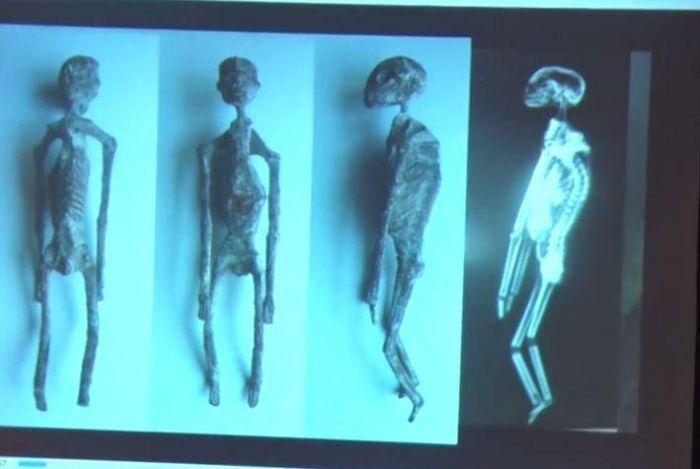 В Перу найдены скелеты, конечно же, пришельцев