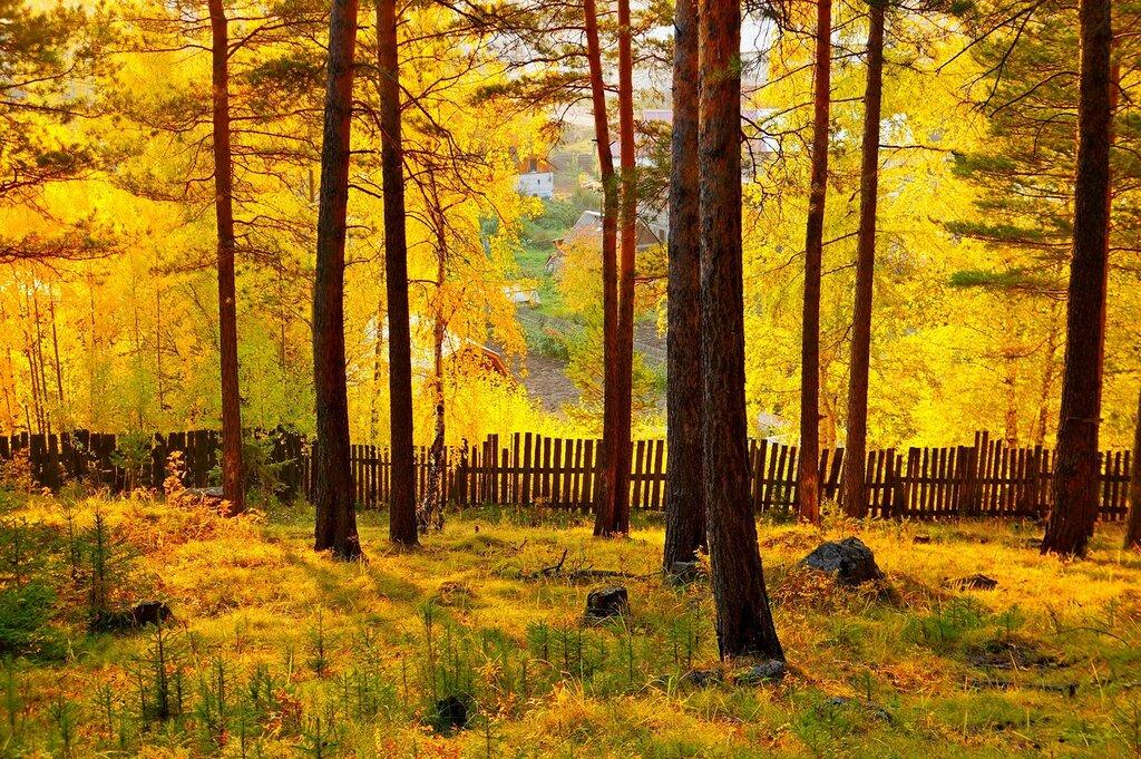 Осенний вечер.jpg