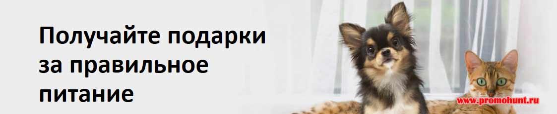 Акция Pro Plan 2018 на proplan.ru/promo