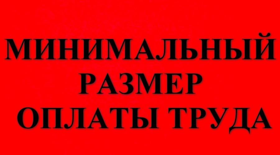 Владимир Путин уточнил срок повышения минимального размера оплаты труда до уровня прожиточного минимума