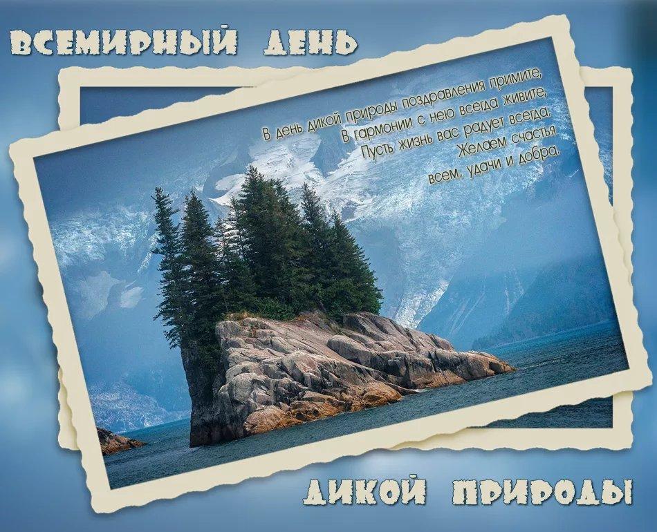 Открытки Всемирный день дикой природы. Островок открытки фото рисунки картинки поздравления