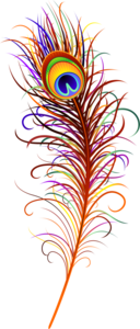 перья павлина