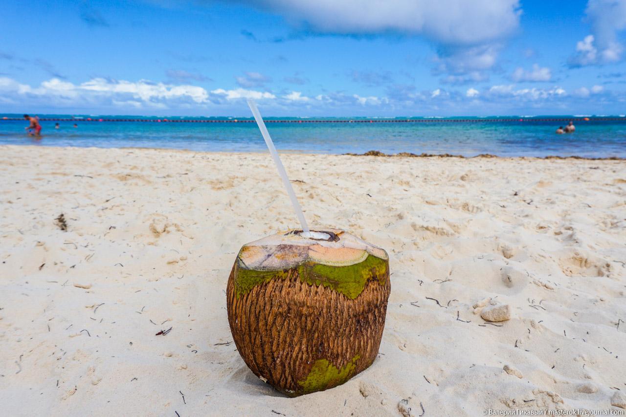 Как съесть кокос?