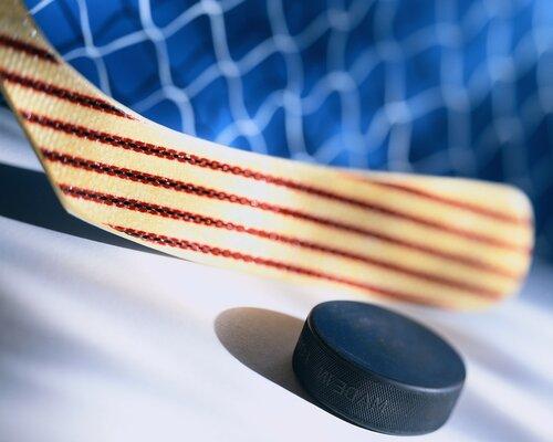 Хоккей-с-шайбой (1).jpg