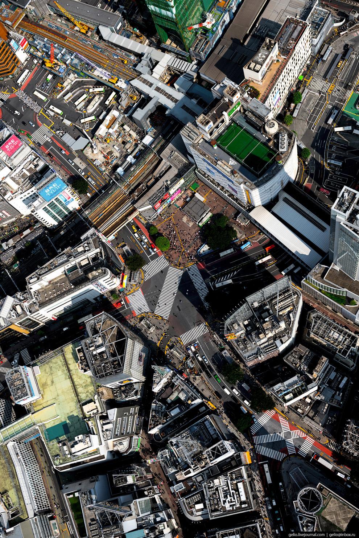 28. Плотность населения в столичном округе превышает 7200 человек на квадратный километр (в России —