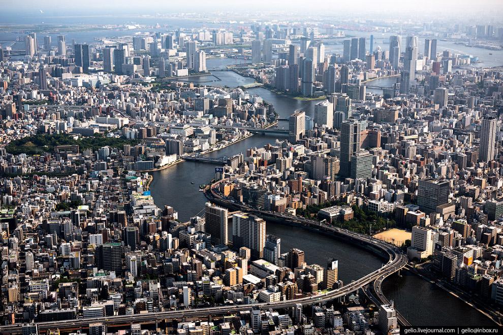 33.  Телевизионная башня Tokyo Skytree («Небесное дерево») . Высочайшее сооружение То