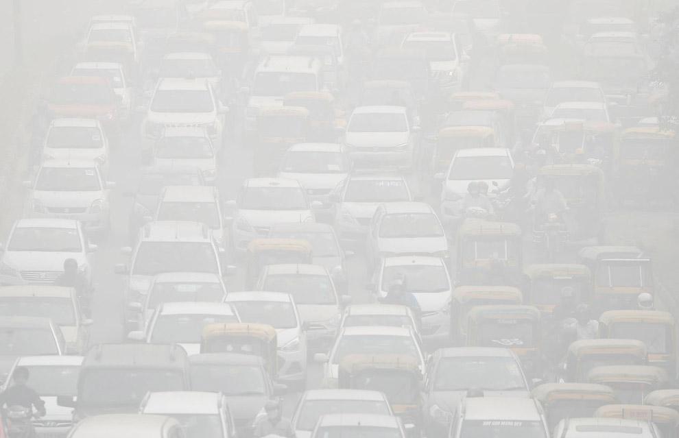 9. Власти Дели закрыли школы на пять дней. И школьники гуляют по улицам без элементарных средств защ