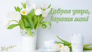 https://img-fotki.yandex.ru/get/369718/131884990.fd/0_166491_25191629_M.jpg