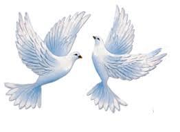 21 сентября Международный день мира. Два голубя