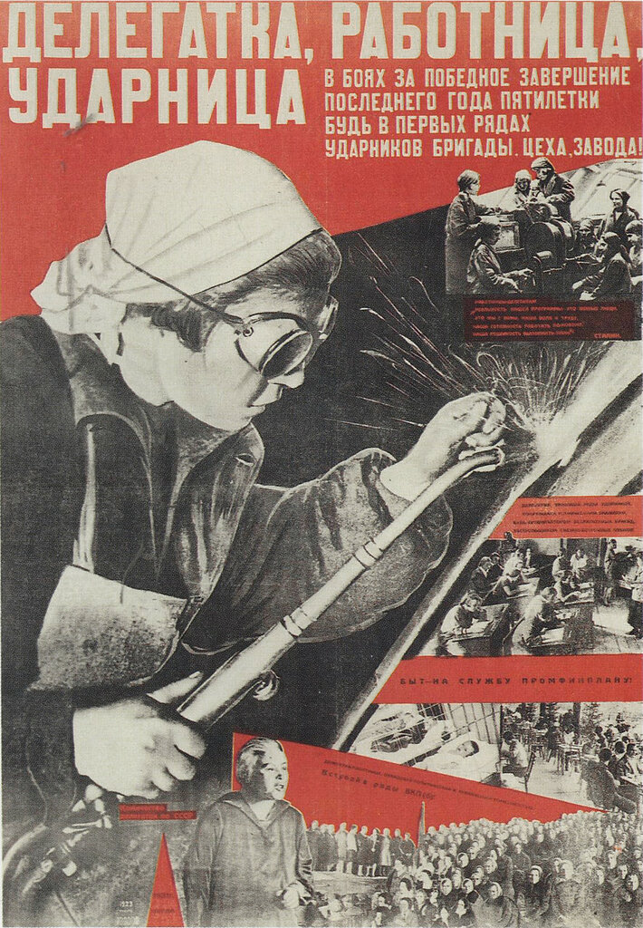 pinus-1931.jpg