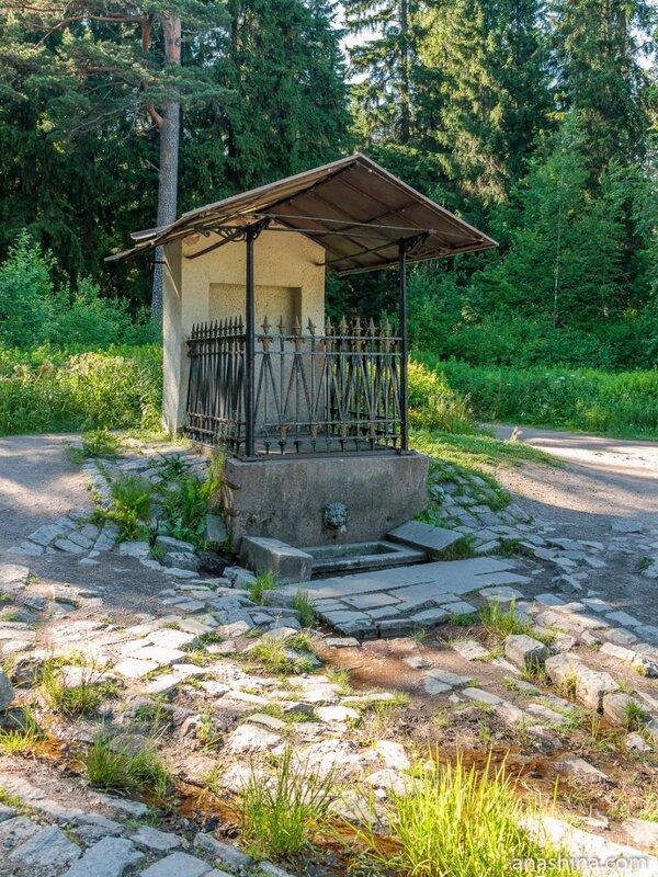 """Источник """"Нарцисс"""", парк Монрепо, Выборг"""