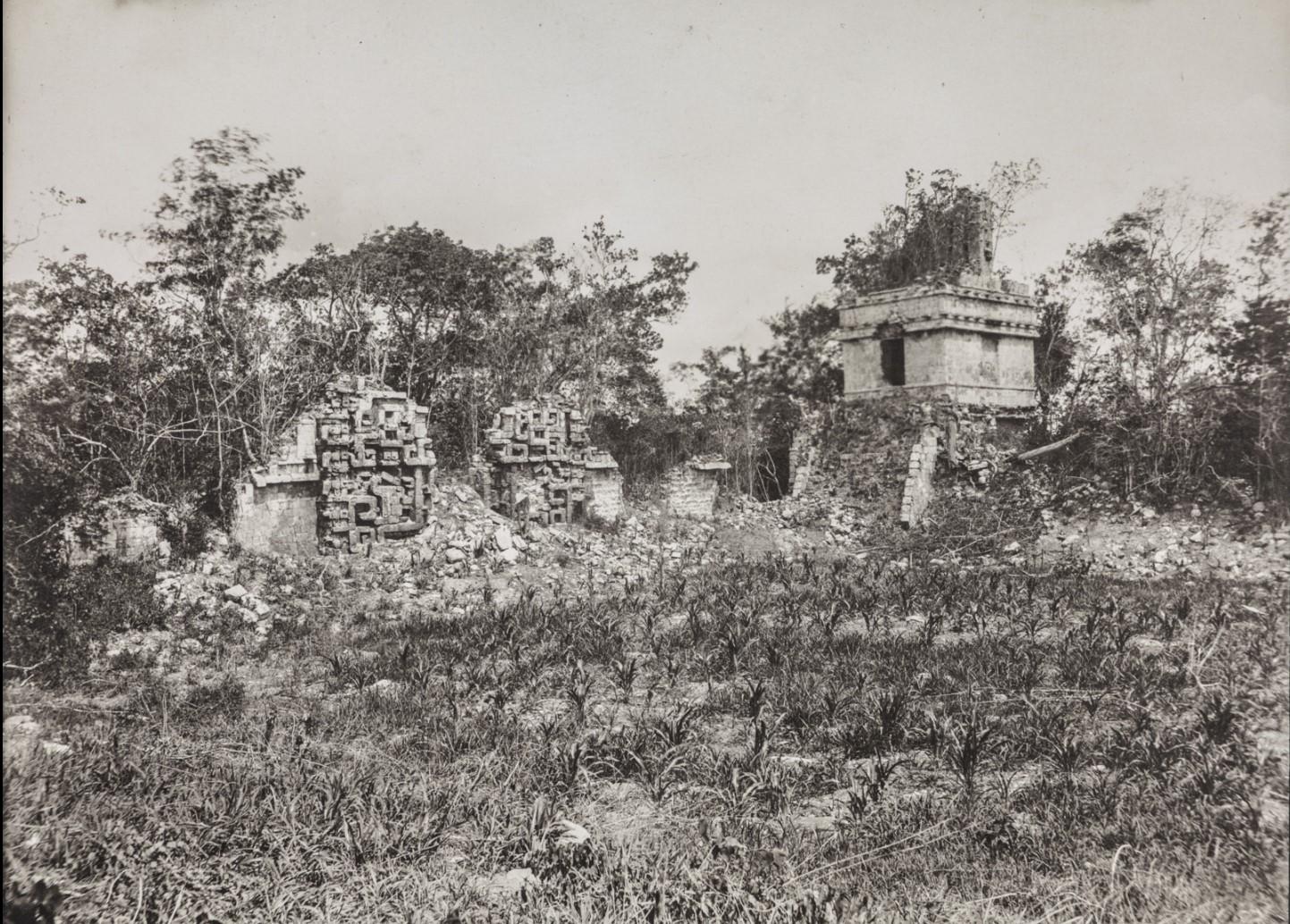 11.Здания III и V в руинах майя Хохоб