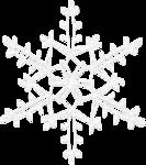 Delph_Unforgettable_Christmas el (2).png