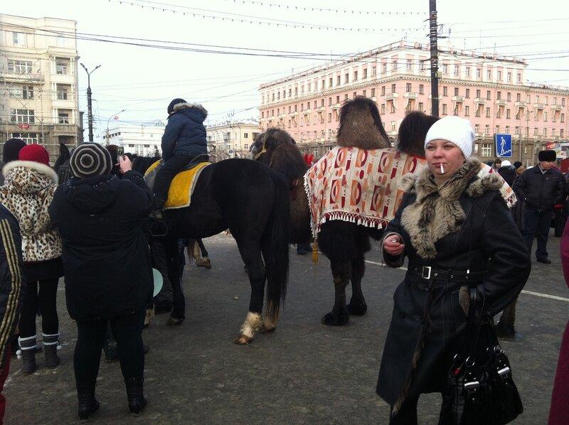 Верблюд - тотемное животное Чердачинска