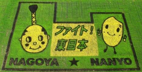 картины на рисовых полях Японии
