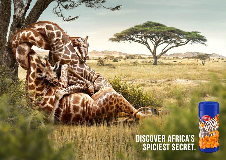 Галлюциногенный арахис - любовные игры жирафов