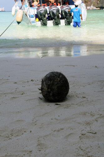 кокос с бухты
