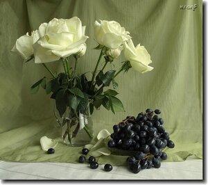 бел розы1.jpg