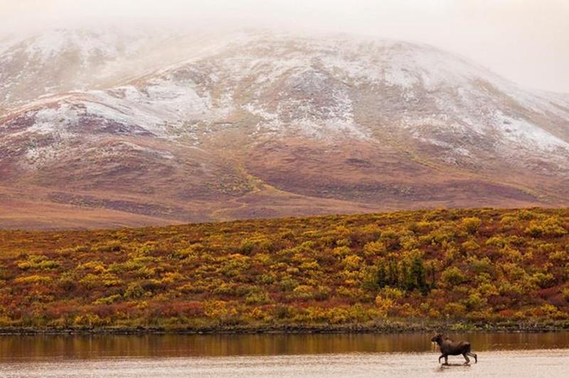 Осенние озера: 30 фотографий 0 145dd1 ba551fec orig