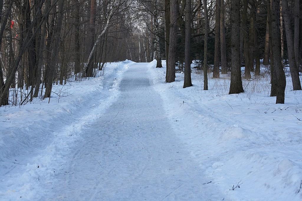 Прогулка в конце марта 2009