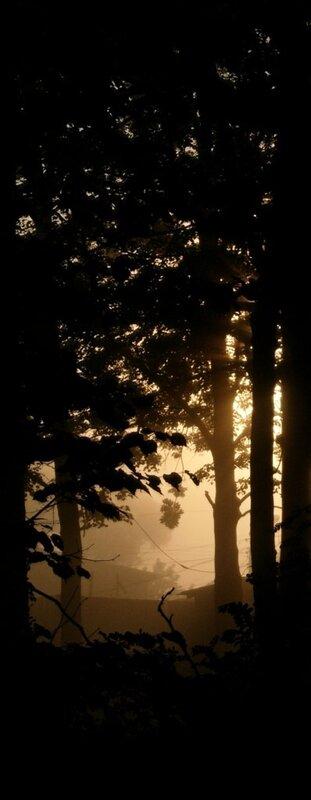 Фотографии природы и пейзажа. Блог фотографа