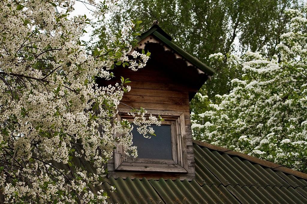 Медоварня – хозяйственная постройка, XVIII век