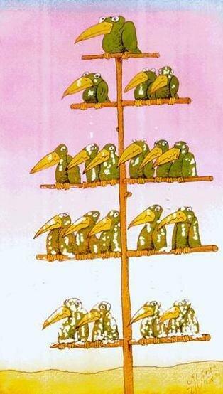 vertikal-vlasti