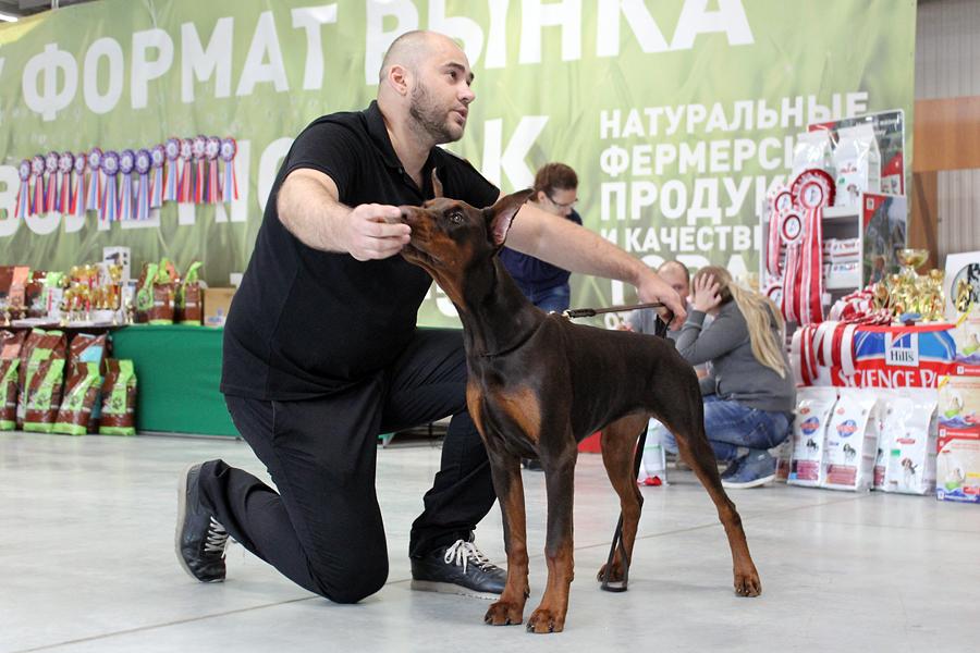 https://img-fotki.yandex.ru/get/370155/155682329.a2/0_15a5e0_3b0abd0a_orig.jpg