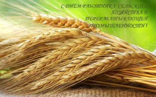 С Днем работников сельского хозяйства. Поздравляю