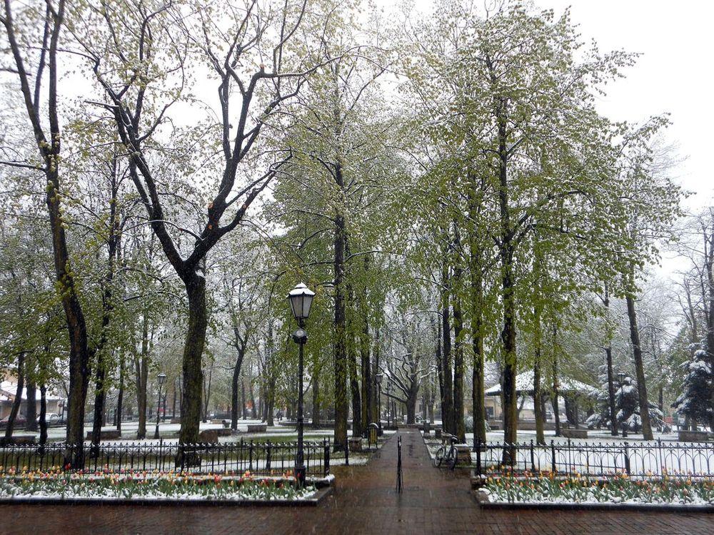 Апрельская зима 2017 в Юго-Восточной Европе (Польша, Словакия, Венгрия, Сербия, Македония, Болгария)