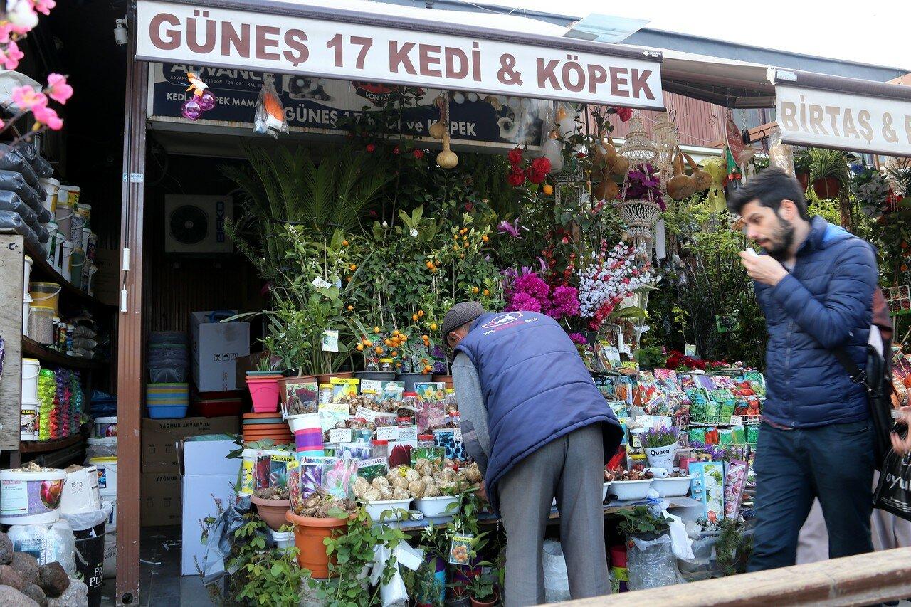 Стамбул. Птичий (цветочный) рынок на площади Ени Джами. Площадь Новой мечети (Yeni Cami Meydani)