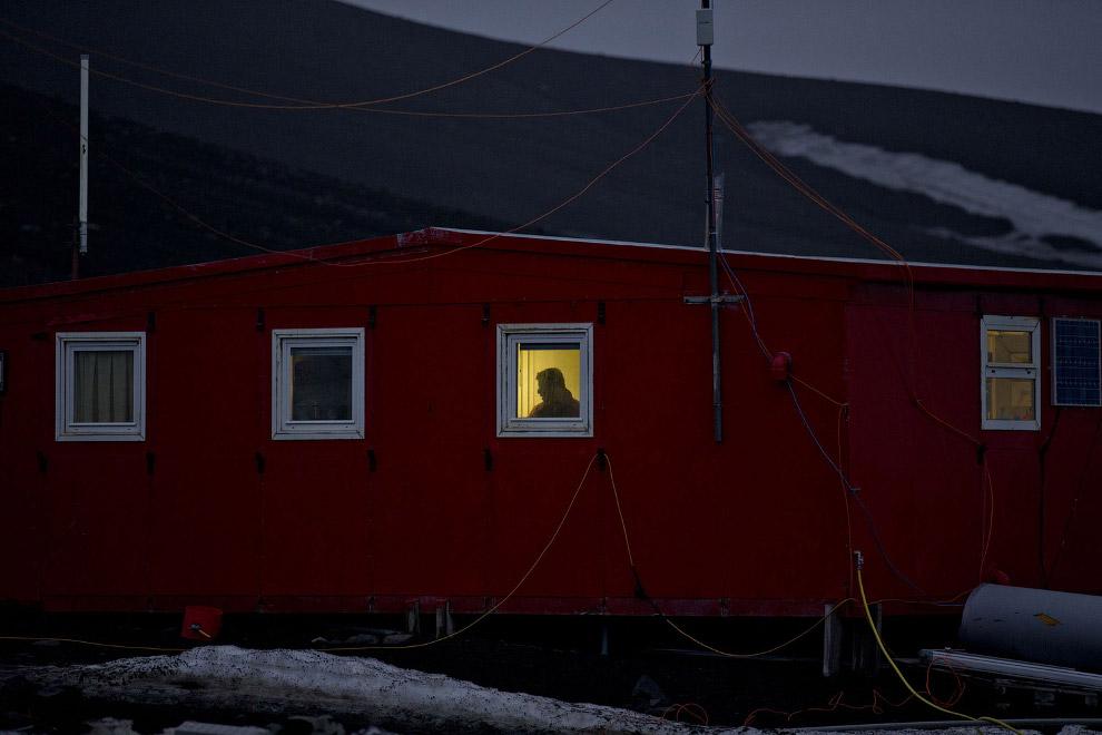 14. Айсберг у архипелага Южные Шетландские острова, 27 января 2015. Растения и животные в Антар