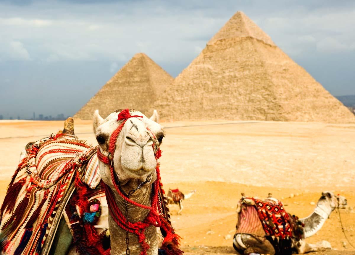 Туры в Египет от Silver Tour