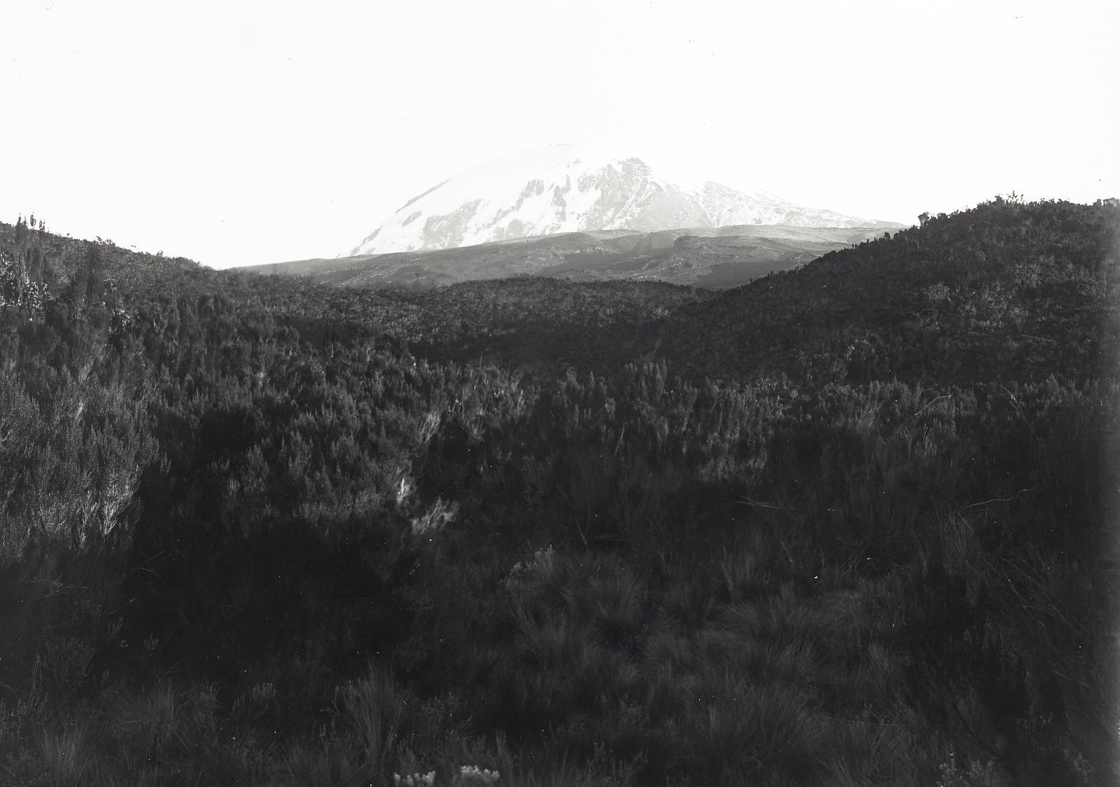 12. Килиманджаро. Кибо. Вид с юга на юго-запад