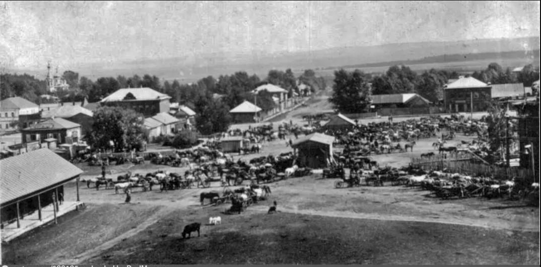 Мобилизация лошадей в Оханске. 1914