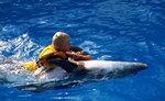 Одесский дельфинарий