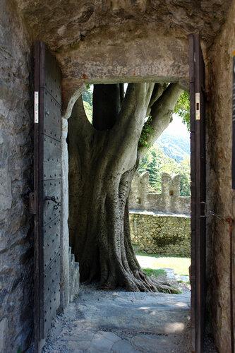 В замке Монтебелло