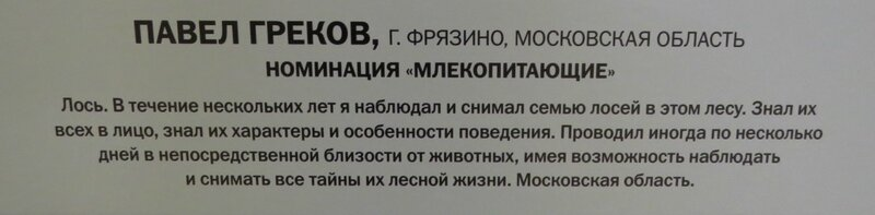 https://img-fotki.yandex.ru/get/370224/140132613.6a6/0_24107d_86674a45_XL.jpg