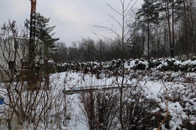 Продолжение зимних дачных зарисовок