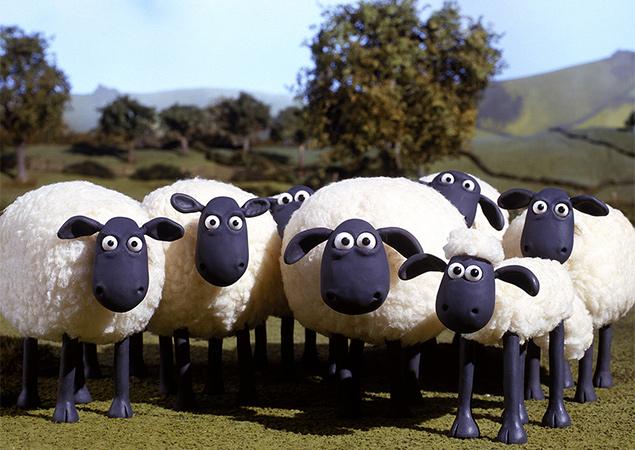 146781_21-sheeps.jpg