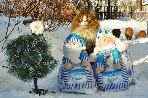Ну, дед Мороз, погоди!