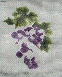 dim_6888_grape_on_vine_05.jpg