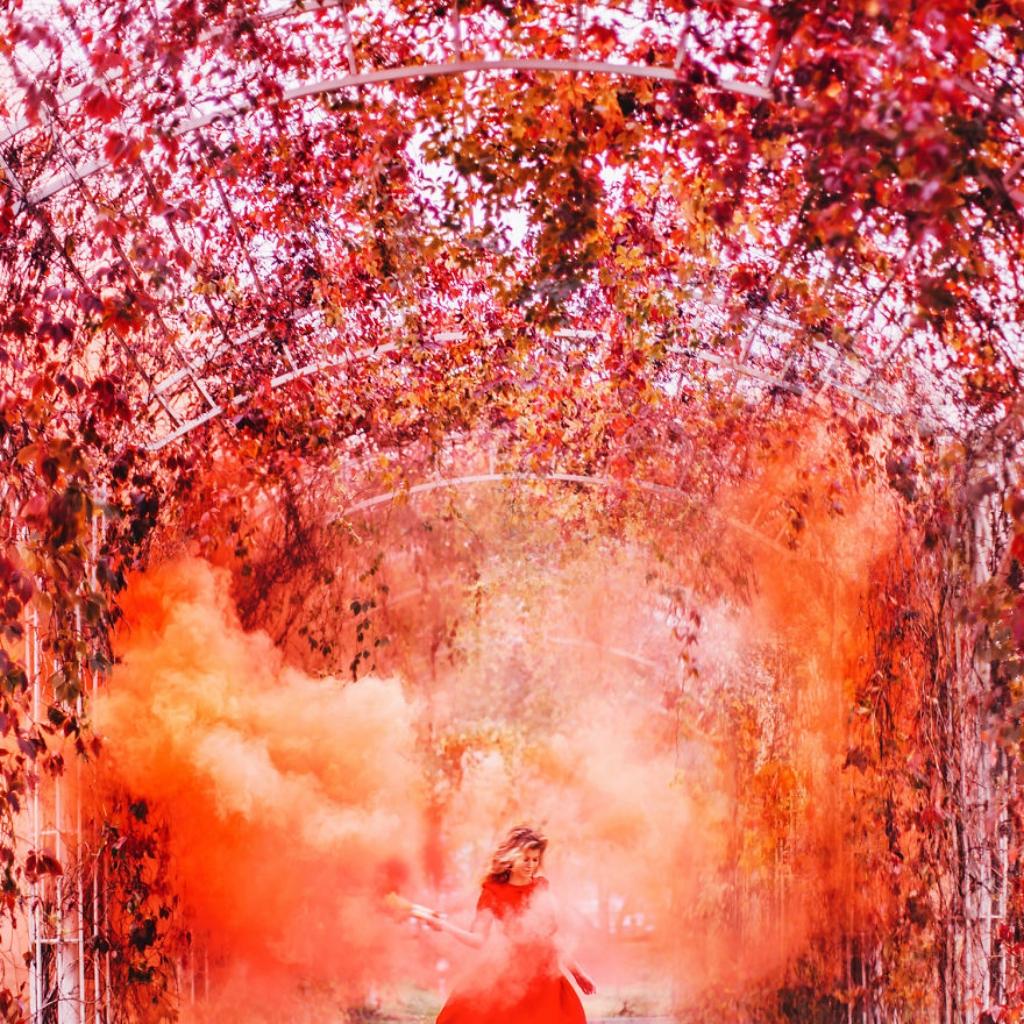 autumn0078-59e7bdae5bc04__880.jpg