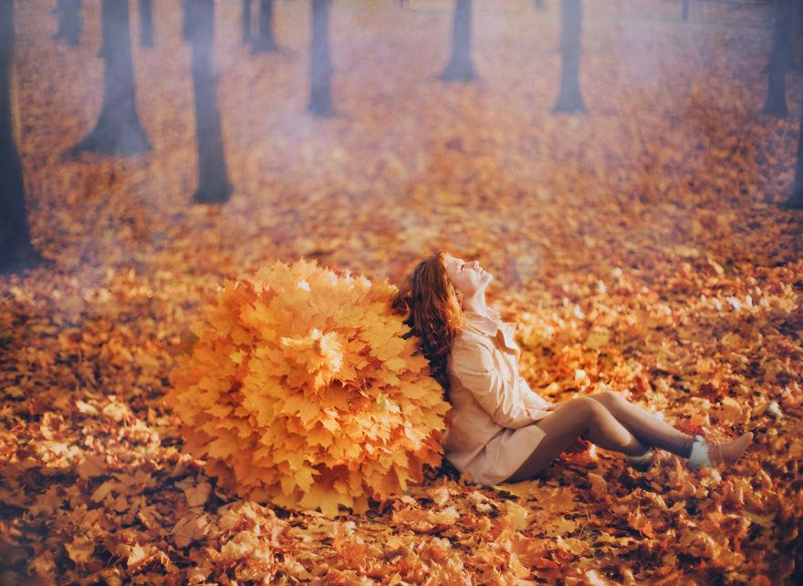 autumn0036-59e7b2322a4d9__880.jpg