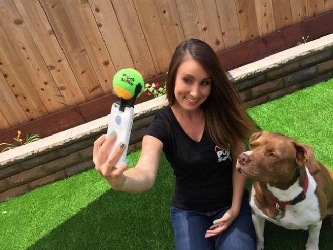 © aliexpress.com     Если увас есть собака ивымечтаете стать крутым собачьим блогером,