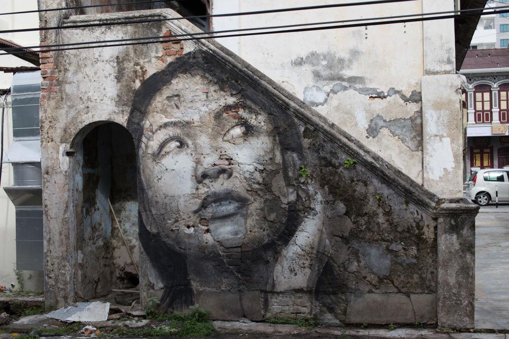 Женский портрет Роне на стене строительной площадки.